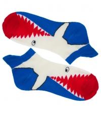 Socks Shark